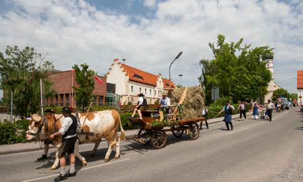 Wappenjubiläum der Marktgemeinde